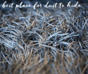 dust-air-quality