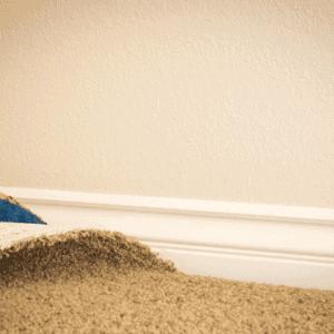 hardwood-under-carpet